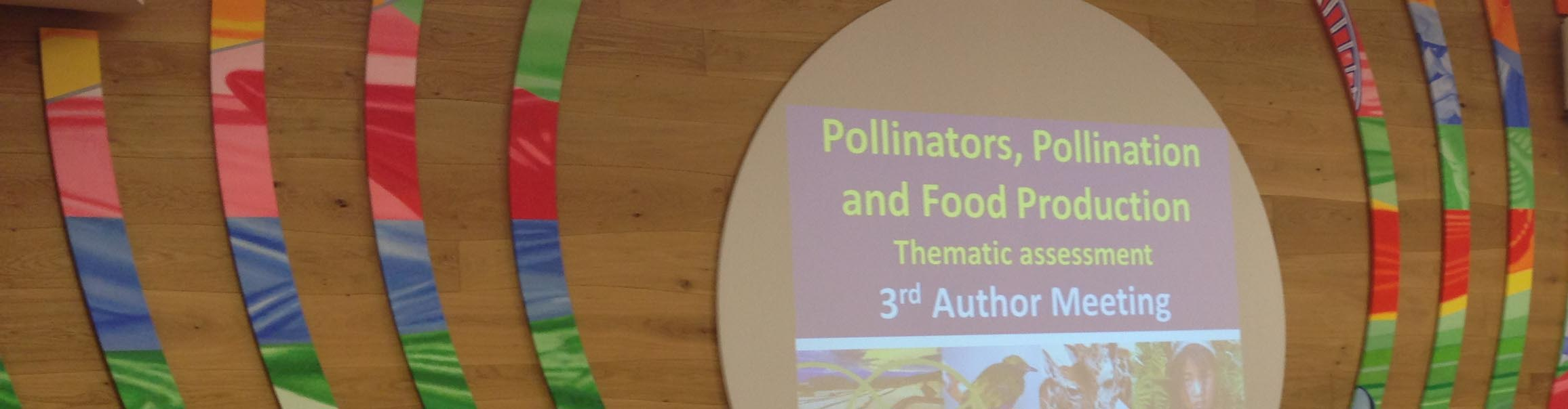 header-pollinators