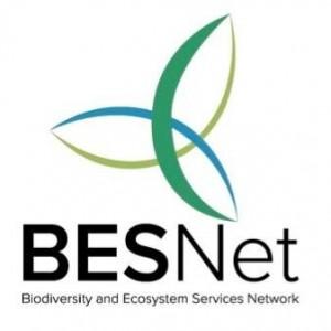 besnet logo